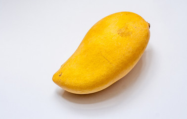 ripe big yellow mango