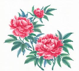 Акварельные цветы, пионы, вариант 1.