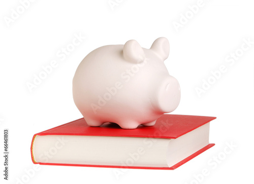 Piggy bank on a book