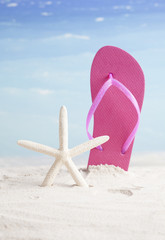 flip-flops and starfish