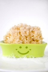 sponge on smiley dish