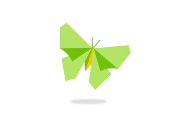 green butterfly abstract vector