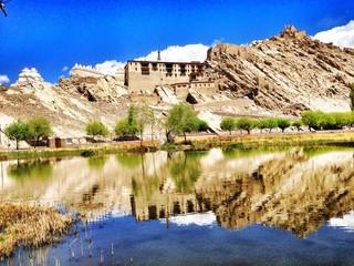 shey palace leh ladakh