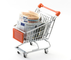 shopping cart with Euro money