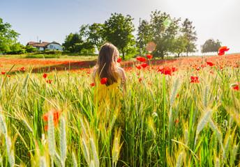 Portrait of a cute little girl playing in a pooppy field