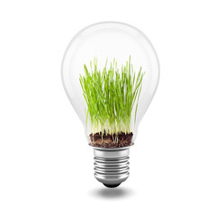 3d close up image of green grass inside a light bulb