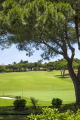 Green golf course in Vilamoura