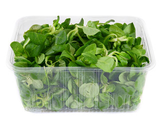 Greens in the container.