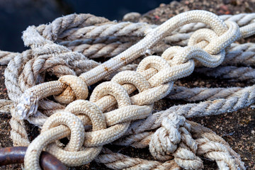 Rope knotted on a shore