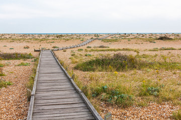 beach with wooden walkway leading to the sea