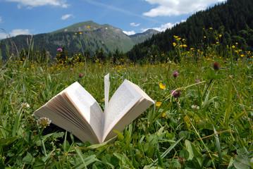 Le livre dans l'herbe