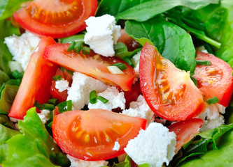 Tomato salad with cheese and arugula