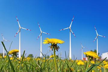 Windkraftpark