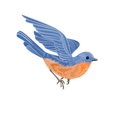 Flying bird Vector Illustration without gradients