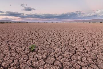 dry dam