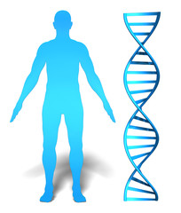 Human gene research and genetic analysis concept with DNA spiral
