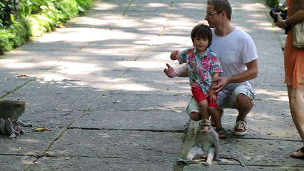 Family looking at monkey in Ubud Monkey Forest in Bali