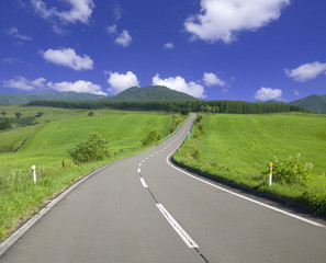 Road in the field, Kamishihoro town, Hokkaido prefecture, Japan