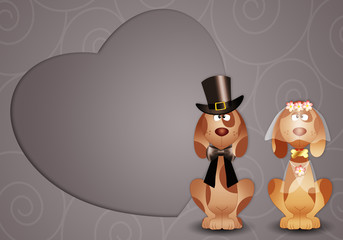 Dogs just married with heart