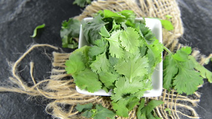 Fresh Coriander (not loopable)