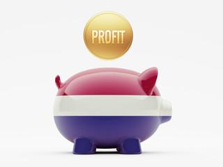Netherlands Profit Concept.