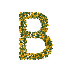 Letter B made from green and yellow bell peppers