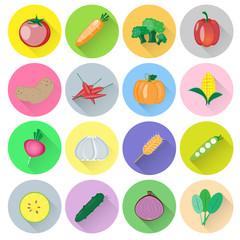 Vegetable vector set