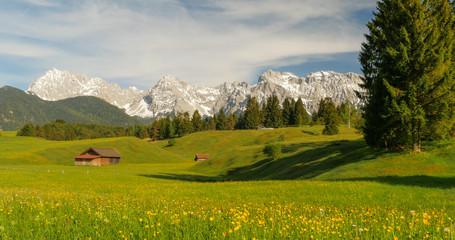 Idyllische Berglandschaft mit Wiese, Blumen und Berggipfeln