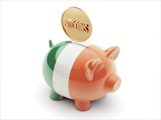 Ireland Bitcoin Concept Piggy Concept