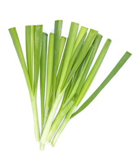fresh green leek