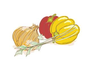 キッチン/野菜のイラストセット