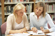 College tutor with student - 66521609