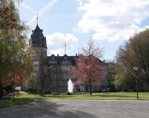Detmol, Fürstliches Residenzschloß