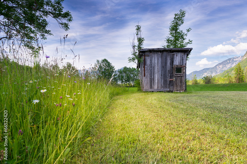 rural meadow with high grass and old wooden hut at mowed grass