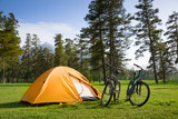 Fototapety camping
