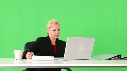 Executive businesswoman working with laptop