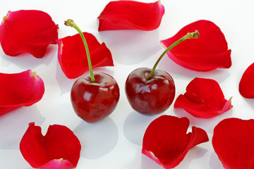 Cherries and Rose Petals