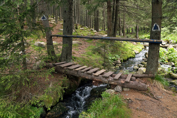 Wooden bridge in National Park Retezat, Romania, Europe