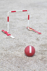 Japanese gateball it is similar to croquet