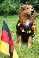 Hund feiert WM 2014 für Deutschland