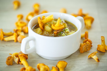 vegetable soup with chanterelle mushrooms