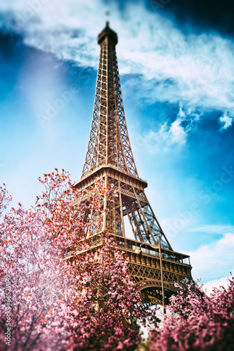 Springtime in Paris. Eiffel tower - 66529849