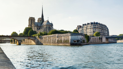 Notre Dame Cathedral and Seine river. The most famous Gothic Cat