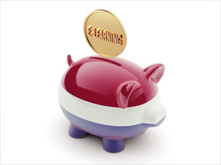 Netherlands E-Learning Concept Piggy Concept
