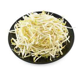 Bean Sprouts in the black plate