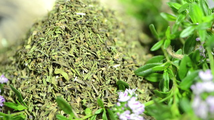 Winter Savory (loopable)