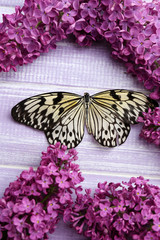 Beautiful butterfly and lilac flowers, on wooden background