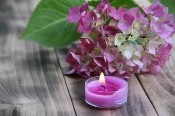 Romantische Dekoration mit Kerze und Hortensienblüte