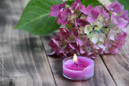 Foto op Plexiglas Hydrangea Romantische Dekoration mit Kerze und Hortensienblüte