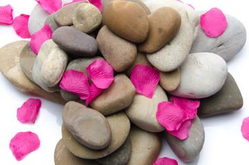 Pebbles with pink petals